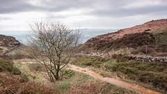 20190321-_MG_0294 (Elliot Sampford) Tags: curbar curbaredge curbargap derbyshire derwentvalley landscape nationalpark peakdistrict boulders escarpement rocks