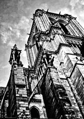 Notre Dame Paris (Franco-Iannello) Tags: blackwhite streetphotography architecture