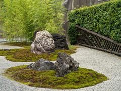 Castle garden (Tim Ravenscroft) Tags: garden gravel bamboo japanese japan stones castle nijo kyoto hasselblad hasselbladx1d