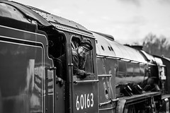 Fireman (aljones27) Tags: nvr nenevalleyrailway tornado a1 pacific loco locomotive steam engine steamengine bw monochrome blackandwhite cambridgeshire crew fireman footplate overton ferrymeadows peterborough