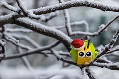 A snail's life - Happy New Year (2017) #TBT (Ballou34) Tags: 2016 7dmark2 7dmarkii 7d2 7dii afol ballou34 canon canon7dmarkii canon7dii eos eos7dmarkii eos7d2 eos7dii flickr lego legographer legography minifigures photography stuckinplastic toy toyphotography toys stuck in plastic snail winter snow christmas neaw year cold