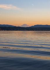 Ripples Under Rainier (s.d.sea) Tags: lake sammamish washington washingtonstate wa lakeside outdoors pnw park pacificnorthwest redmond pentax k5iis mount rainier mt landscape water ripples waves sunset