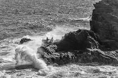 Risky Buisness DSC_1113 (BlueberryAsh) Tags: oahu southeastshore waikiki rocks waves crashingwaves ocean sea water coastline cliffs cliffface danger hawaii monochrome blackandwhite