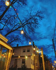 dusk (ekelly80) Tags: dc washingtondc winter january2019 petworth timberpizza night sky dusk lights blue clouds trees glow
