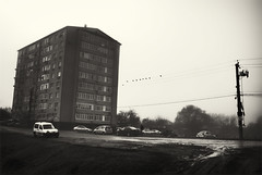 building, car and birds on a road in the fog (Pomo photos) Tags: building house fog mist misty road car pillar pole wire cable bird birds cars people walking silhouette sepia brown leicax1 monochrome mono mood surreal morning grass winter blackandwhite black bw moody noir city street urban decay abandoned rusty alone window