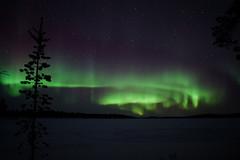 I colori della fantasia (Giacomo Miraldi) Tags: nothernlights veskoniemi finlandia auroraboreale colori