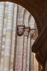 IMG_5205  Sulky Saxon gargoyle (Beth Hartle Photographs2013) Tags: norfolk norwich cathedral anglican ancient historic benedictine monastery churchofengland gargoyles 13thcentury