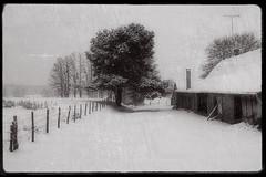 Hiver en Bresse (Constantin SARAFIAN) Tags: bresse france hiver winter snow neige ασπρόμαυρη черныйибелый снег зима франция χιόνι χειμώνασ γαλλία