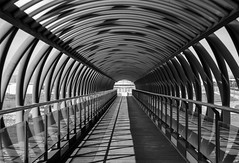 The bridge (Miguel Angel Prieto Ciudad) Tags: bridge mostoles madrid urban street sonyalpha sony spain sonyalphadslr alpha3000 mirrorless black blancoynegro blackandwhite bnw ngc vanishingpoint