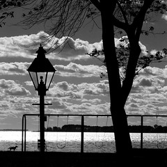 Dog & lamp - IMG_5805 (T. Brian Hager) Tags: dog lampost lamp swingset tree clouds water square bw blackwhite sky canon canoneos7d digital maryland