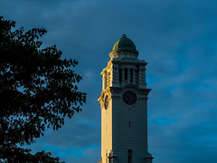 Golden sunlight on Victoria Convert Hall clock tower (Thanathip Moolvong) Tags: highlight sunlight golden landmark victoria concert hall clock tower singapore civic district