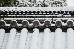 金閣寺|京都 Kyoto (里卡豆) Tags: 京都市 京都府 日本 jp olympus 40150mm f28 pro olympus40150mmf28pro omd olympusem1markii em1markii