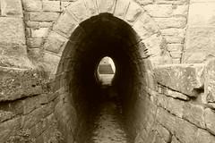 Donkey underpass at Possett Bridge, Marple  (Peak Forest Canal)   February 2019 (dave_attrill) Tags: underpass tunnel donkeys possetbridge lock locks peakforest canal towpath peakdistrict nationalpark cheshire february 2019 cheshirering sepia monochrome tint water waterway
