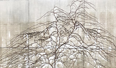 natural art (Rosmarie Voegtli) Tags: concrete wall branches tree dornach aftertherain pattern