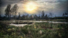 Griesbroek 2 (Geert E) Tags: nature landscape sunset winter longexposure water pool pond creek griesbroek balen hulsen olmen