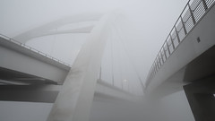 Cloud City (Kurayba) Tags: edmonton alberta canada fog foggy morning march 23 2019 walterdale bridge new cloud cloudy clouds pentax k1 pea soup weather heavy wet grey ethereal suspension hdpentaxdfa2470mmf28edsdmwr dfa 2470 f28 city converging