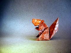 Squirrel 22.5 - Jun Maekawa (Rui.Roda) Tags: origami papiroflexia papierfalten écureuil esquilo ardilla squirrel 225 jun maekawa