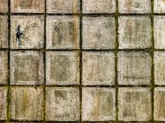 Deel van oude muur (dyjaf) Tags: lijnenspel steen muur