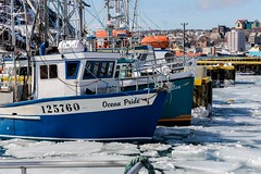Boats in St. John's Harbour (Karen_Chappell) Tags: boat fishing ice winter stjohns fishingboat blue white city rural canada newfoundland nfld eastcoast atlanticcanada harbour ocean sea atlantic avalonpeninsula orange green yellow wharf buildings