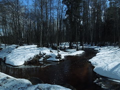 Sviatka river, Russia (cloversun19) Tags: grass water pier wood trees tree boat lake river summer walking country vacation landscape sky tosna house road shore coast beach russia russian sun rainbow ray rays spring warm day morning may april mist