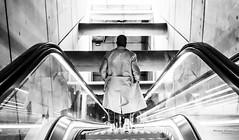 Street - Going down (François Escriva) Tags: street streetphotography paris france people candid olympus omd photo rue colors sidewalk black white bw noir blanc nb monochrome subway underground escalator man metro mac