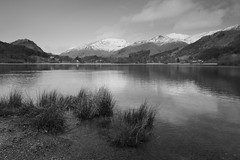 Grasmere Lake (jeff.dugmore) Tags: uk england britain europe lakedistrict nationalpark lakedistrictnatonalpark lake water rock mountains mountainside hillside snow white snowtops reflection tree sky clouds outside outdoors tranquil scenic serene moody landscape waterscape rural nature hillwalking hiking canon nisi lakeside longexposure grasmere cumbria monochrome blackandwhite