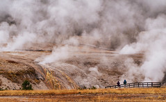 Fall scenes from Yellowstone National Park, WY, USA (The Shared Experience) Tags: yellowstonenationalpark 2016 a6300 sonya6300 sonydslr nps nationalparks nps100 hotsprings geyser wild nature landscapes wildlife usa wy