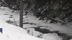 In the Berkshires for the Winter (Art of MA Foto Stud) Tags: dalton snow winterscene winter river ice pinetrees firtrees
