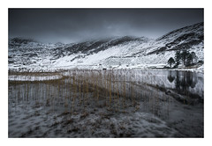 Cwmorthin - January 18th (Edd Allen) Tags: mountain northwales wales clouds dinorwig landscape mountainscape atmosphere atmospheric sunrise nikond810 serene bucolic uk cwmorthin quarry slate snow lake ice reeds frozen zeissdistagon18mm