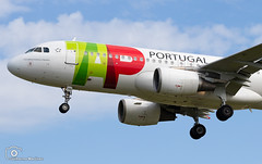 TAP Air Portugal (Guilherme_Martinez) Tags: airbus aircraft airbuslovers sky summer sun follow followme family planespotting passion portugal lisboa lisbon love lovers like