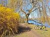 Spring 2019 (gregor_kampus) Tags: spring bike trip ride park skaryszewski warszawa warsaw rower wiosna nad jeziorem nice weather blue sky ładna pogoda błekitne niebo samsung