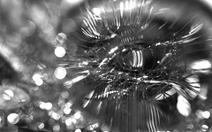 Le regard de verre (7 Blue Nights) Tags: glass reflection look eye blackandwhite abstract art 7bluenights harmonyblue sony carlzeiss rx10 light hss sliderssunday picktwo iridescent macro crazytuesday
