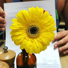 The symbolism of the holiday... #cafe #flower #yellowandgreen