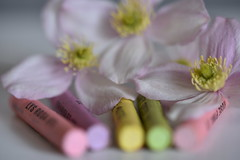 Pastel 8 (PhilDL) Tags: macromondays macro pastel pastels pastelcolours flower clematis clematismontana colour colours color colors colourful subtle subtlety softtones softfocus softness crayons oilpastels focalpoint blur blurring exposure contrast hues highlights shadows shades lightshade light levels dark vibrance foreground background camera dslr photography photo lens nikon nikonuk tamron nikond810 90mm