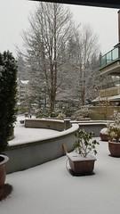 Snowy Sunday (D70) Tags: