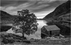 LLyn Ogwen Boathouse, North Wales (Charles Connor) Tags: llynogwen llynogwenboathouse northwales snowdonia landscapephotography landscape monochromelandscape monochrome blackandwhite nature naturephotography buildings trees water canondslr clouds dramaticskies skies mountains