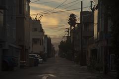 (Rob Chiu) Tags: iconoclast venice storm backstreet backalley nikon nikkor nikond850 24120mm f4 la losangeles america northamerica california