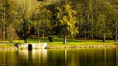 La Meuse - 6481 (ΨᗩSᗰIᘉᗴ HᗴᘉS +44 000 000 thx) Tags: meuse river fleuve nature hss sliderssunday belgium europa aaa namuroise look photo friends be wow yasminehens interest eu fr greatphotographers lanamuroise flickering sonydscrx10m4 wépion