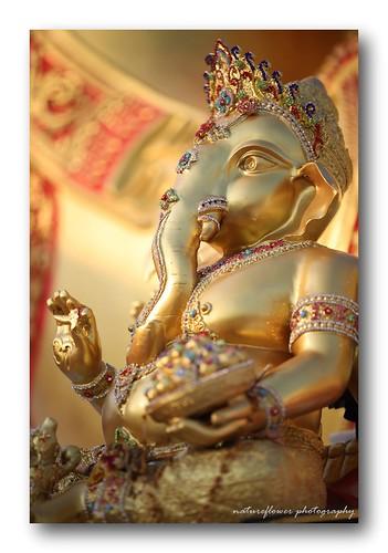 Golden Ganesha.