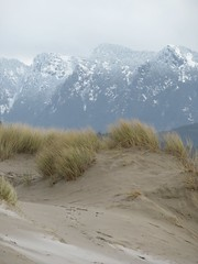 sand and snow (carolyn_in_oregon) Tags: oregon pacificocean cannonbeach