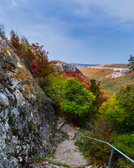 Way down (@Dpalichorov) Tags: landscape nature way down stairs path walk tree trees forest bulgaria provadia българия провадия sky clouds view high highview panorama nikond3200 nikon d3200 mountain hil hill