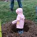 Ayrsley_Tree_Planting_2019_ (37)