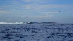 Polynésie 2019 - Tahiti (Valerie Hukalo) Tags: surf surfeur surfer vague punaauia hukalo valériehukalo tahiti polynésiefrançaise polynesia océanpacifique pacificocean archipeldelasociété archipel island île océanie polynésie françaisefrench polynesiaocéan pacifiquepacific oceanfrancearchipel de la société