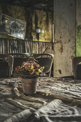 Just look at the flowers (Some Place Only We Know) Tags: urbex flowers blumen lost verlassen decay mold schimmel verfall restaurant abandoned