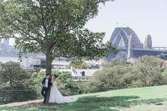 DSC08284 (Ted Foto) Tags: wedding realwedding sydneywedding love light brideandgroom