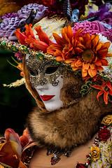 Venezia Carnevale 2019 (alfapegaso) Tags: