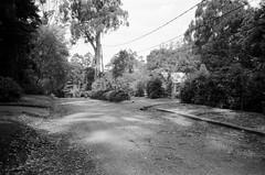 Hume Lane..! (Matthew Paul Argall) Tags: canonsnappy20 fixedfocus 35mmfilm blackandwhite blackandwhitefilm kentmere100 100isofilm road street humelane