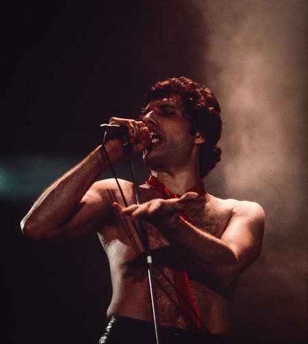 Freddie Mercury Dublin 22nd November 1979