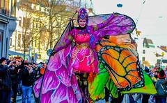 Sambakarneval in Bremen (2) (matthias-fotografien) Tags: sambakarneval bremen kostüme bunt viertel
