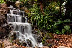 Flowing (Jared Beaney) Tags: canon canon6d australia australian photography photographer travel victoria fitzroygardens gardens waterfall longexposure forest tropical foliage landscapes landscape nature